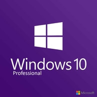 windows 10 wholesale