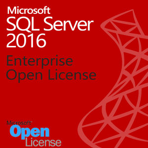 SQL Server 2016 Enterprise 50 Users - License