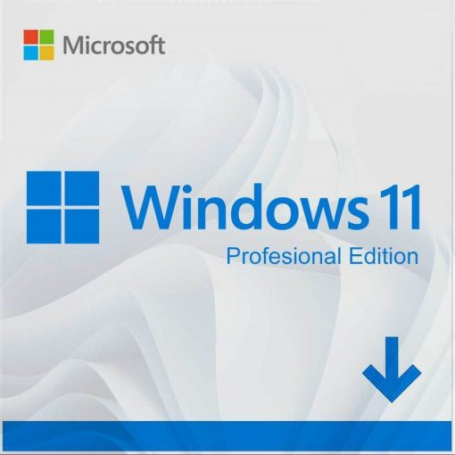 Microsoft Windows 11 Pro Product Key Activation License